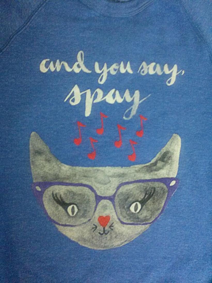 vaute meow copy